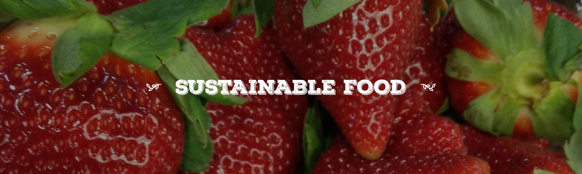Sustainable Food overlay on close up photo of red strawberries